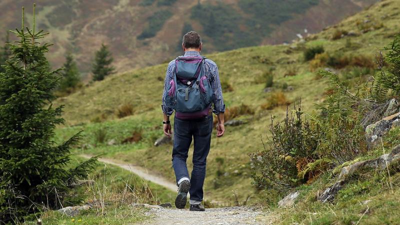 Fitness, Wandern: Wanderweg durch eine Berglandschaft mit Wiese und Nadelbäumen. Ein Mann wandert, er trägt einen blauen Rucksack