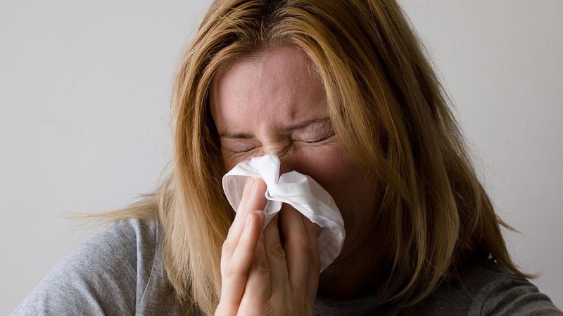 Heuschnupfen, Pollenallergie, Allergie, Grippe: Junge Frau mit langen graden blonden Haaren niest in ein weisses Taschentuch.