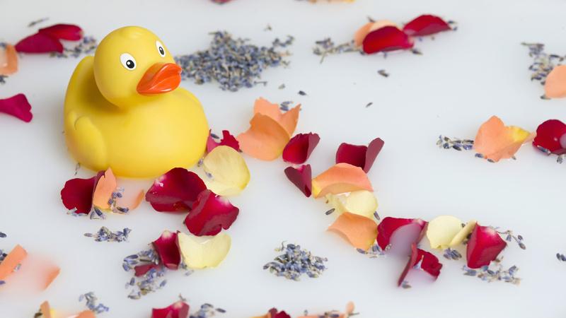 Wellness, Baden, ätherische Öle: gelbe Gummiente schwimmt auf einer milchigen Flüssigkeit zusammen mit Rosenblättern in allen Farben