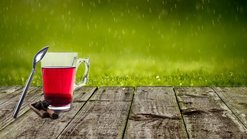 Ernährung, Tee, trinken: Tasse mit rotem Tee steht auf einem Holztisch, an der Tasse lehnt ein Kaffeelöffel, daneben liegen Zimtstangen, der Hintergrund ist eine grüne Wiese
