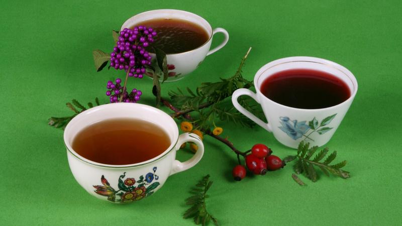 Ernährung, Tee, trinken: drei weisse Porzellanteetassen mit aufgemaltem Blumenmuster stehen nebeneinander vor einem grasgrünen Hinterrgrund. Zur Dekoration gibt es Stechpalmenzweige