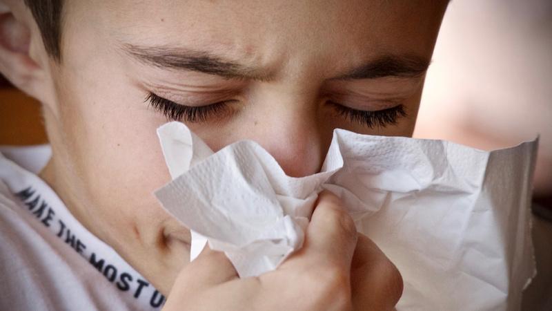 Allergie, Entstehung, Allergen: Bub schnäuzt sich in ein Papiertaschentuch.