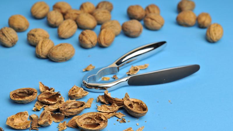 Ernährung, Früchte, Schalenobst, Nüsse: inmitten von Walnüssen, die teilweise geöffnet sind, liegt ein Nussknacker